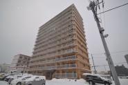 札幌市白石区菊水5条1-3-10
