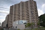 札幌市厚別区青葉町11丁目1番1号
